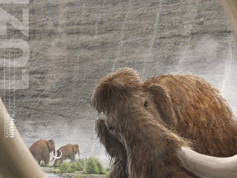 Titelbild Mammut